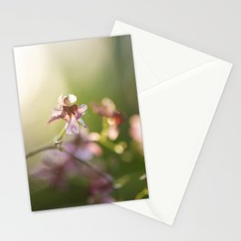 Orchid Twinkle  Stationery Cards