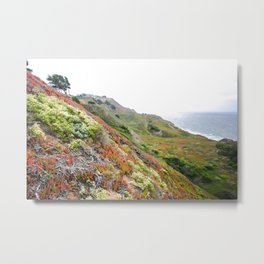Thornton State Beach Metal Print