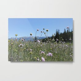 Into the Great Wideopen Metal Print