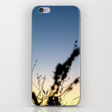 Sunset Contrast iPhone Skin