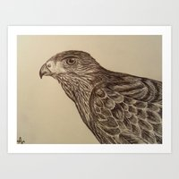 hawk Art Prints featuring Hawk by Leslie Creveling