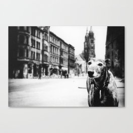 Stray Dog in WWII Canvas Print