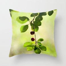 Cherries 5318 Throw Pillow