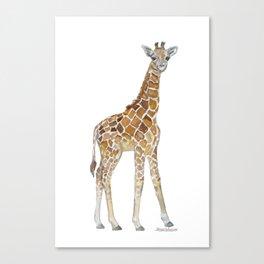 Baby Giraffe Watercolor Painting Canvas Print
