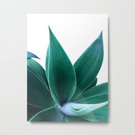 Agave on White Metal Print