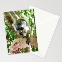 Lemur of Madagascar Stationery Cards