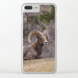 Leader Clear iPhone Case