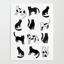 Cats print Poster