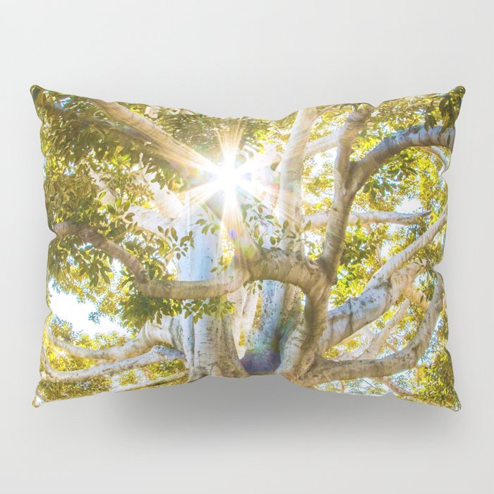 Tree Paradise (Color) Pillow Sham