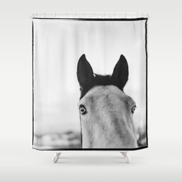 Equo 4 Shower Curtain