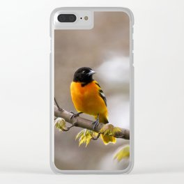 The Colors of Spring Clear iPhone Case