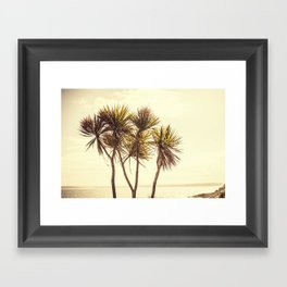 St. Ives Palms, Cornwall Framed Art Print