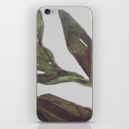 Olive Wings iPhone Skin