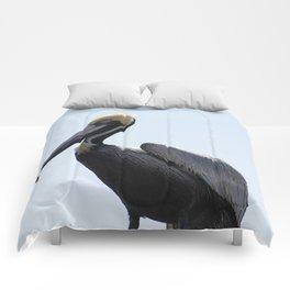 Pelican Face. Comforters