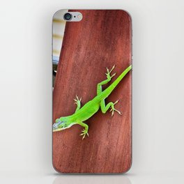 Green Anole iPhone Skin