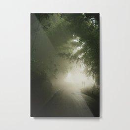 The mystic path Metal Print