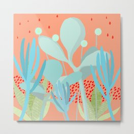 Succulents in the sunshine Metal Print