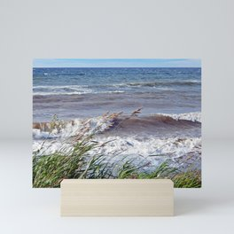 Waves Rolling up the Beach Mini Art Print