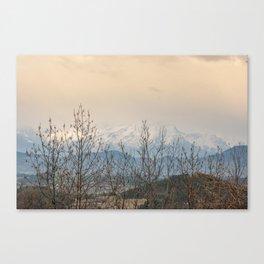Snowy mountains through the trees Canvas Print