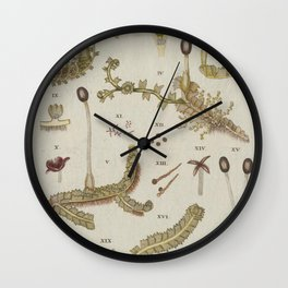 Moss And Hornwort Botany Wall Clock