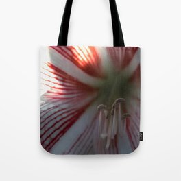 Botanical Gardens Red Orchid #175 Tote Bag