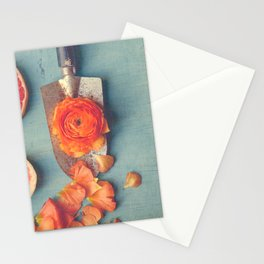 Grapefruit and Flowers Stationery Cards