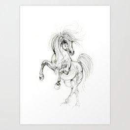 Prancing horse Art Print
