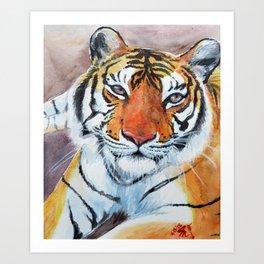 Priya Tigress Art Print