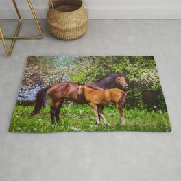 Mother horse with little foal Rug