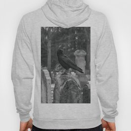 Crow In Shades Of Stone Hoody