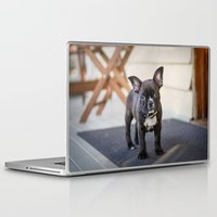 frog Laptop & iPad Skins featuring Frog by Carol Knudsen Photographic Artist