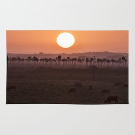 Sunset in the palm trees Rug