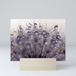 dandelion purple III Mini Art Print