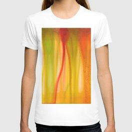 Abstract No. 572 T-shirt