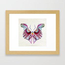 owl or butterfly? Framed Art Print