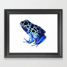 Blue Poison Frog Framed Art Print