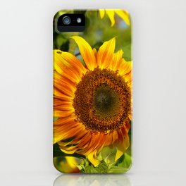 September Sunnies II iPhone Case