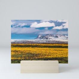 Saxifrage on Iceland Mini Art Print