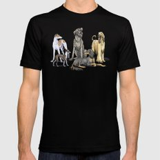Graceful Sighthounds Black MEDIUM Mens Fitted Tee