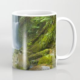 III - Rainforest waterfalls, Beauchamp Falls, Great Otway NP, Victoria, Australia Coffee Mug