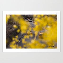Flowers in New York City Art Print