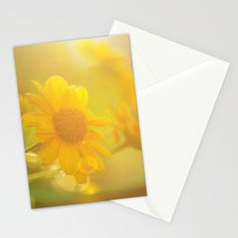 sunny evenings Stationery Cards