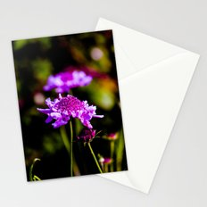 Shades of pink Stationery Cards