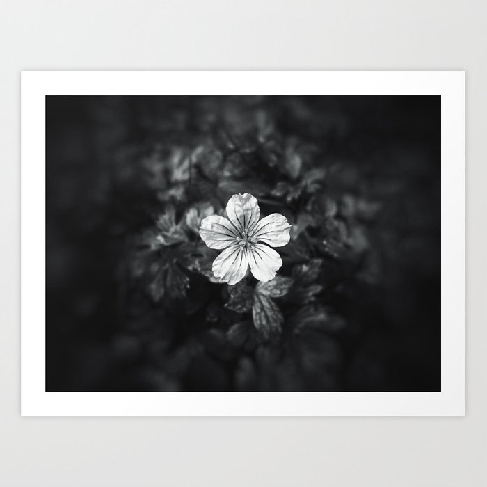 Minimalistic black and white flower petal Art Print