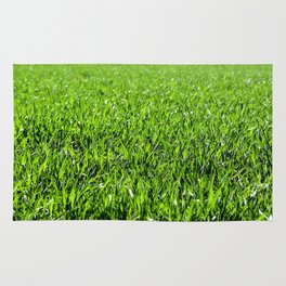 Green grass field in a sunny day Rug