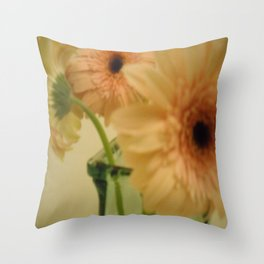 baby-pink daisy-petals ~ flowers Throw Pillow