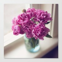 peony Canvas Prints featuring Peony by Jenny Althouse