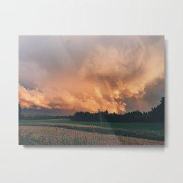 Double Rainbow Meadow Metal Print