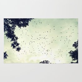 Flock of birds at sunset Rug