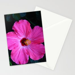 Hibiscus Blossom  Stationery Cards